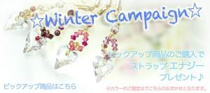 cp_winter