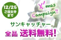Xmasキャンペーン